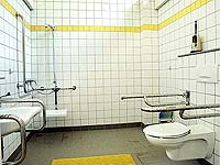 Sanitary for disabled persons